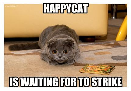 happycat-is-waiting-for-to-strike1.jpg